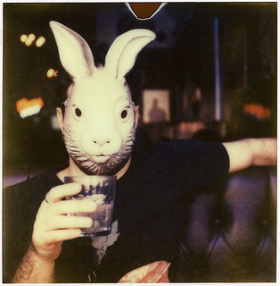 'RoidWeek #3: rabbit (tequila, derek)