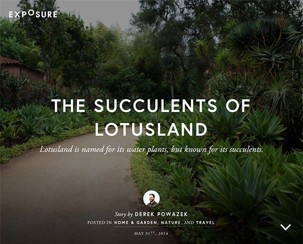 The Succulents of Lotusland